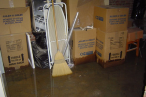 fans in wet basement minneapolis mn plumbing company